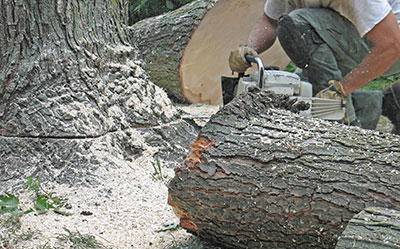 storm debris removal emergency tree service